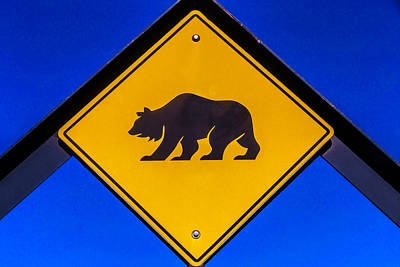 Photograph - Bear Xing Sign by Garry Gay