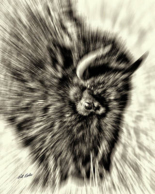 Photograph - Beard With Burs - Motion - Black-and-white by Bill Kesler