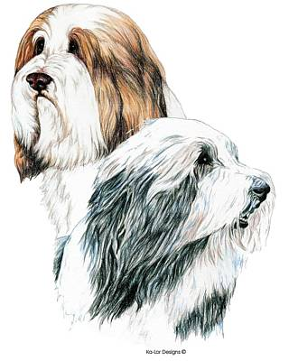 Dogs Drawing - Bearded Collies by Kathleen Sepulveda