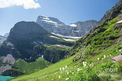 Beargrass - Grinnell Glacier Trail - Glacier National Park Art Print
