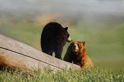 Bears In Conversation Art Print by Art Spectrum