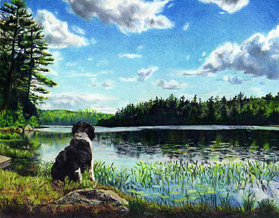 Drawing - Beasley On Black Pond by Shana Rowe Jackson