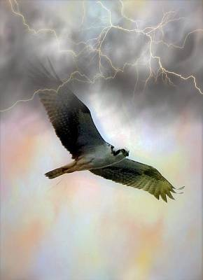 Digital Art - Beating The Storm 2 by Charles HALL