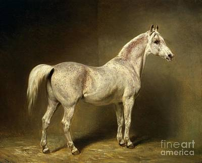Of Horses Painting - Beatrice by Carl Constantin Steffeck
