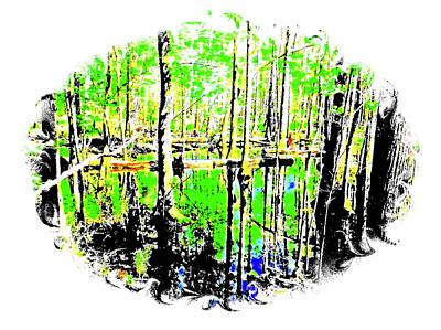 Photograph - Beaty In The Swamp by Cathy Harper