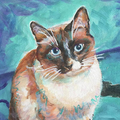 Painting - Beau Kitty by Judy Rogan