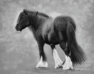 Beau The Shire Draft Horse Art Print