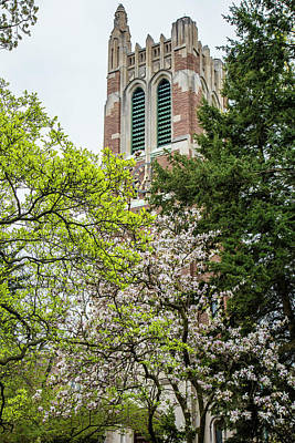 Photograph - Beaumont Tower In Spring With Trees by John McGraw