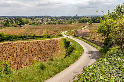 Beaune France From The Vineyards Art Print