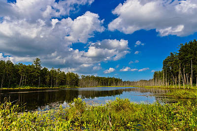 Pine Barrens Photograph - Beautiful Afternoon In The Pine Lands by Louis Dallara