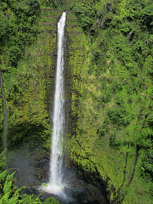 Photograph - Beautiful Akaka Falls by Pamela Walton