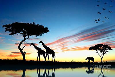 Beautiful  Animals In Safari Art Print