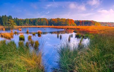 Photograph - Beautiful Autumn Day by Skitterphoto