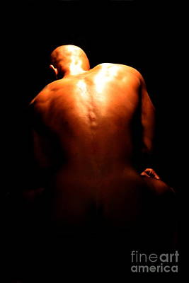 Photograph - Beautiful Backshot by Robert D McBain