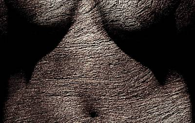 Nude Digital Art - Beautiful Bark by James Barnes