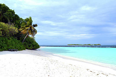 Photograph - Beautiful Beach In Maldives With Turquoise Water And Palm Trees by Oana Unciuleanu