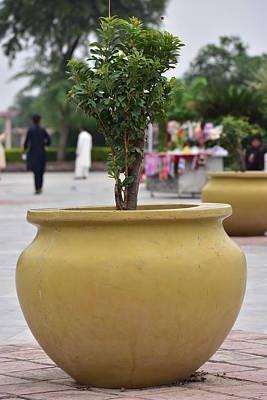 Islamabad Photograph - Beautiful Big Flower Pot In Lake View Park Islamabad  by Atthar Ramzan