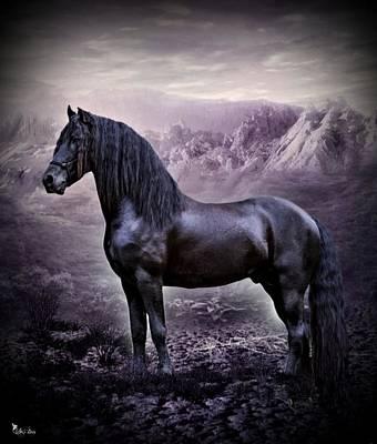 Digital Art - Beautiful Black Friesian Horse by Ali Oppy