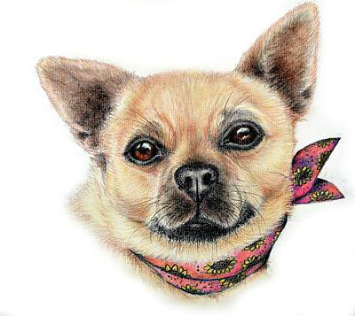 Chiwawa Portrait Wall Art - Drawing - Beautiful Bokkie by Heidi Kriel