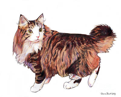 Drawing - Beautiful Cat by Deanna Yildiz
