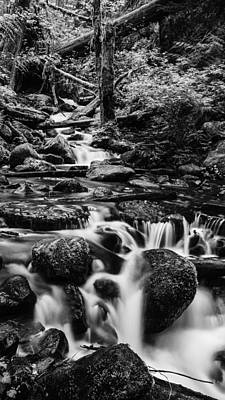 Photograph - Beautiful Creek In Columbia River Gorge In Black And White  by Vishwanath Bhat