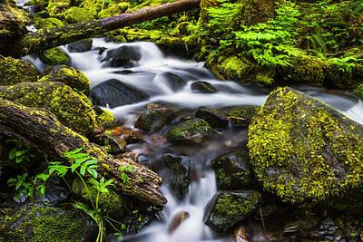 Photograph - Beautiful Creek In Columbia River Gorge Oregon by Vishwanath Bhat