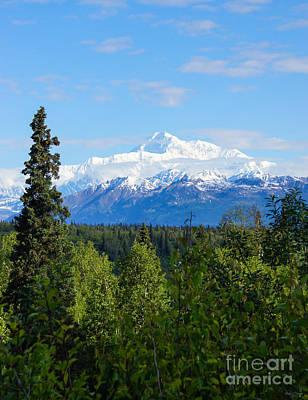 Photograph - Beautiful Denali by Jennifer White