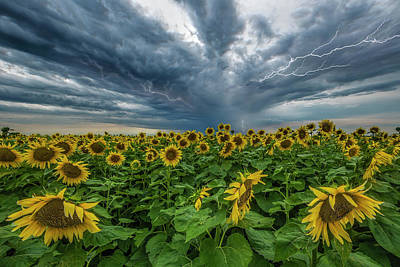 Groen Photograph - Beautiful Disaster  by Aaron J Groen