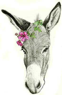 Mixed Media - Beautiful Donkey by Heidi Kriel