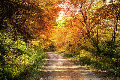 Photograph - Beautiful Fall Day by Debra and Dave Vanderlaan