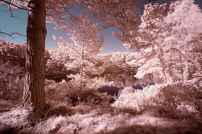 Surrealism Royalty-Free and Rights-Managed Images - Beautiful false color surreal infrared landscape image of lake a by Matthew Gibson