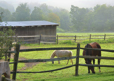 Photograph - Beautiful Farm Morning by Jamart Photography