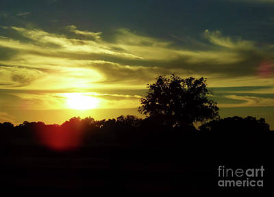 Photograph - Beautiful Florida Sunset by D Hackett