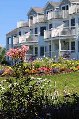 Photograph - Beautiful Flowers At The Bar Harbor Inn by Living Color Photography Lorraine Lynch