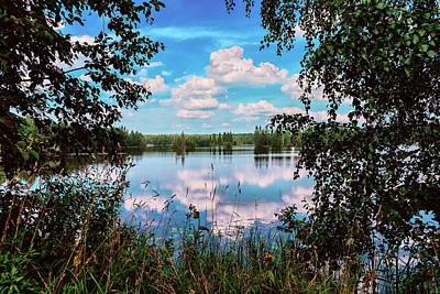 beautiful forest lake in Sunny summer day Art Print