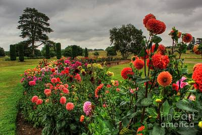 Photograph - Beautiful Garden In Hdr by Vicki Spindler