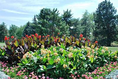 Photograph - Beautiful Garden Park View by Matt Harang