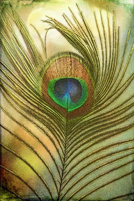 Photograph - Beautiful Golden Peacock Feather Oil Painting by Debra and Dave Vanderlaan