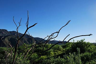 Photograph - Beautiful Green Mountain Landscape by Matt Harang