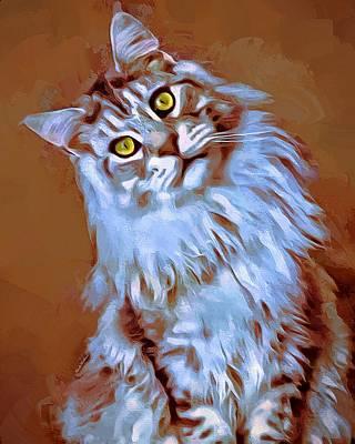 Coon Cat Digital Art - Beautiful Grey Maine Coon by Scott Wallace
