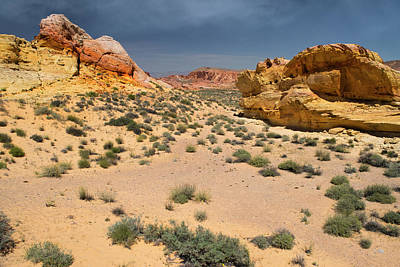 Photograph - Beautiful Hiking In The Valley Of Fire by Frank Wilson