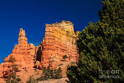 Photograph - Beautiful Hoodoos by Robert Bales