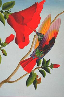 Realism Photograph - Beautiful Hummingbird by Brian Leverton