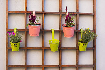 Photograph - Beautiful Idea For Flower Pots In Garden by Newnow Photography By Vera Cepic
