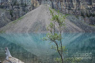 Photograph - Beautiful Lake Maligne by Patricia Hofmeester