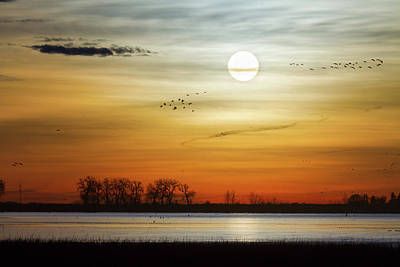 Photograph - Beautiful Lake Morning by James BO Insogna