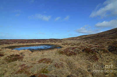 Photograph - Beautiful Landscape On Snaefellsnes Peninsula In Iceland  by DejaVu Designs
