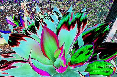 Digital Art - #beautiful #landscape #psychedelic #photography #malibu #california #fun #wild #crazy #cactus by Grace Divine
