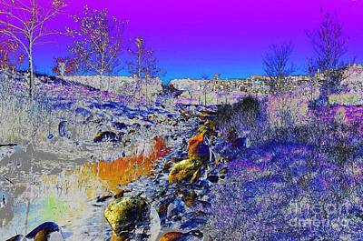 Digital Art - #beautiful #landscape #psychedelic #photography #malibu #california #fun #wild #crazy #mountain      by Grace Divine