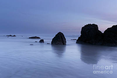 Beach Royalty-Free and Rights-Managed Images - Beautiful Light by Masako Metz